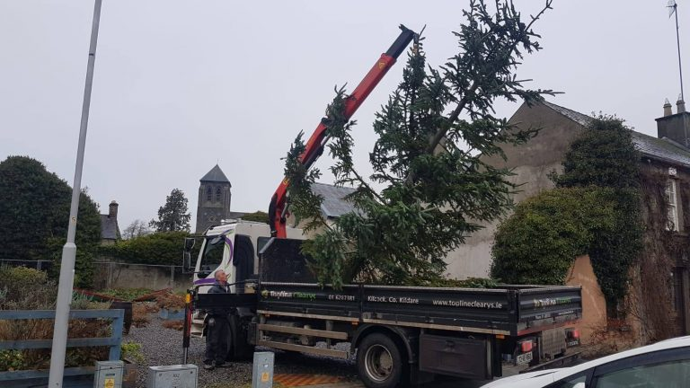 Getting the town's Christmas Tree up!